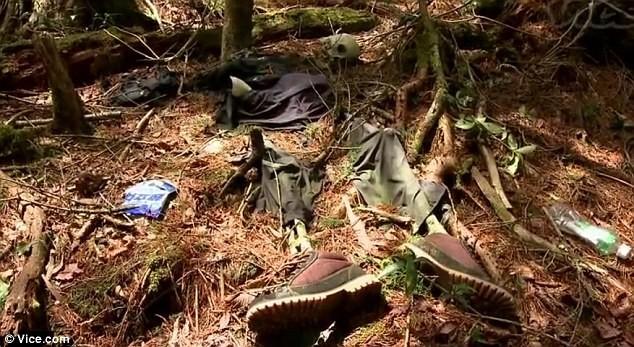 Lạnh gáy khu rừng hàng ngàn người 'đua' nhau vào tự sát - ảnh 7