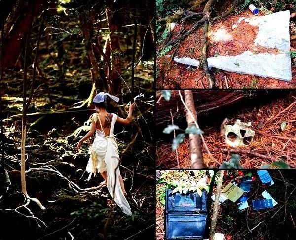 Lạnh gáy khu rừng hàng ngàn người 'đua' nhau vào tự sát - ảnh 8