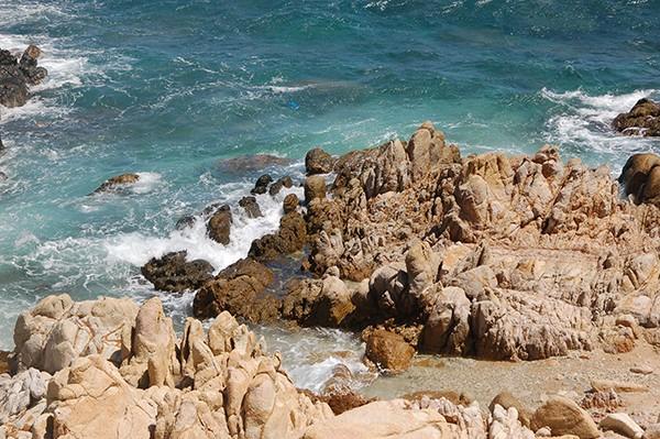 Cẩm nang du lịch Cù Lao Câu - hòn đảo bình yên của Bình Thuận - ảnh 3