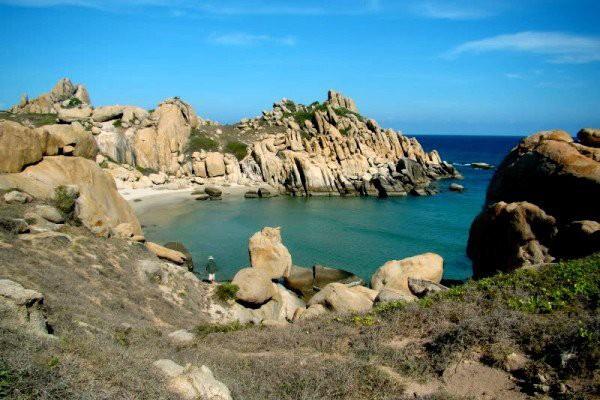 Cẩm nang du lịch Cù Lao Câu - hòn đảo bình yên của Bình Thuận - ảnh 1
