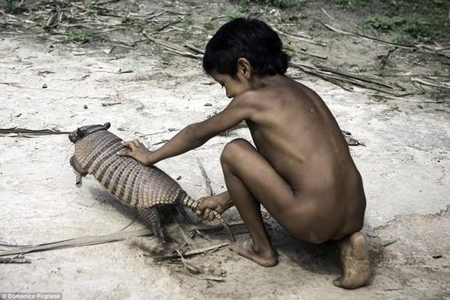 Bộ tộc kỳ lạ ở Amazon nuôi động vật hoang dã, cho bú sữa như con - ảnh 3