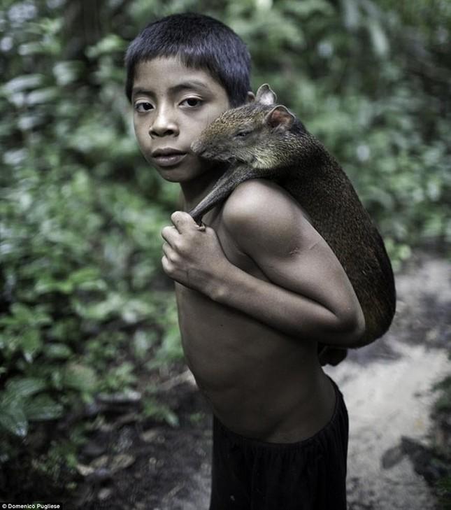Bộ tộc kỳ lạ ở Amazon nuôi động vật hoang dã, cho bú sữa như con - ảnh 5