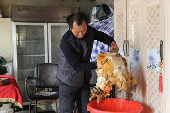 Nông dân đào trúng nấm quý giá 35 triệu đồng/kg - ảnh 1