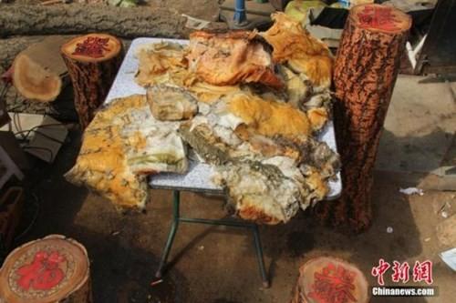 Nông dân đào trúng nấm quý giá 35 triệu đồng/kg - ảnh 2