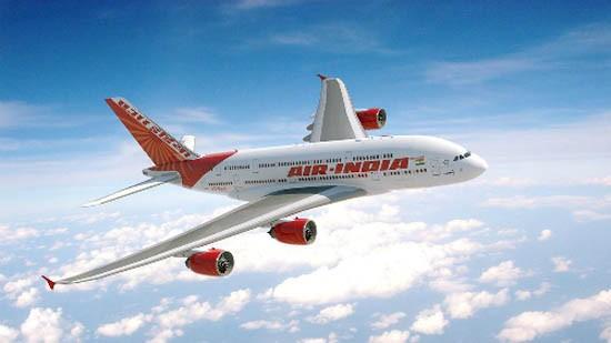 Máy bay chở 200 hành khách quay đầu vì nghi có chuột trên khoang - ảnh 1
