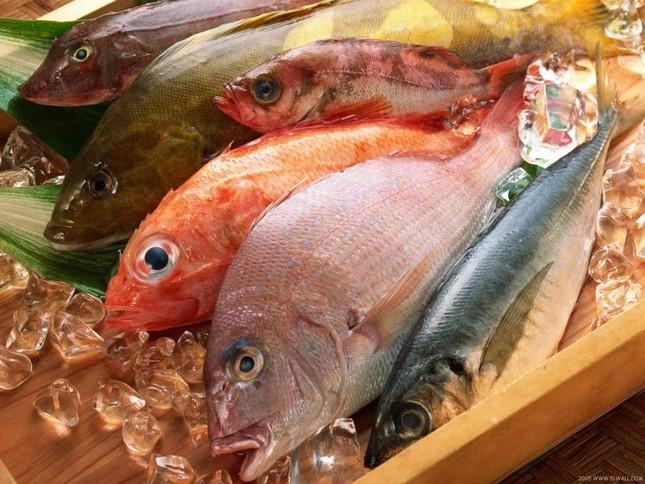 Những loại cá không nên ăn nhiều nếu không muốn huỷ hoại sức khoẻ - ảnh 1