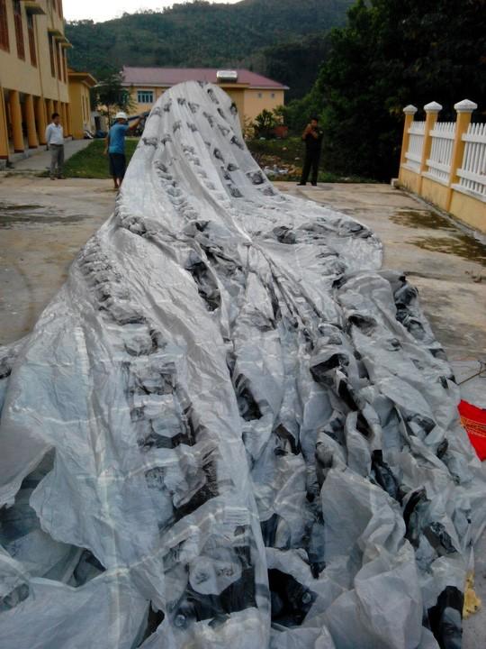 Lại xuất hiện vật thể lạ hình cầu rơi xuống Quảng Nam gây xôn xao - ảnh 2