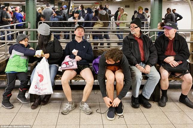 Kỳ lạ hàng nghìn người đổ xô đi tàu điện ngầm nhưng không mặc quần - ảnh 8