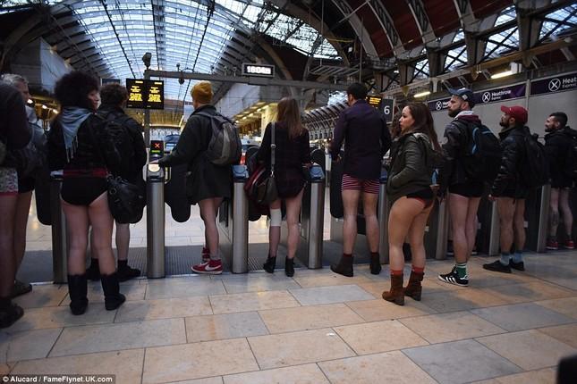 Kỳ lạ hàng nghìn người đổ xô đi tàu điện ngầm nhưng không mặc quần - ảnh 16