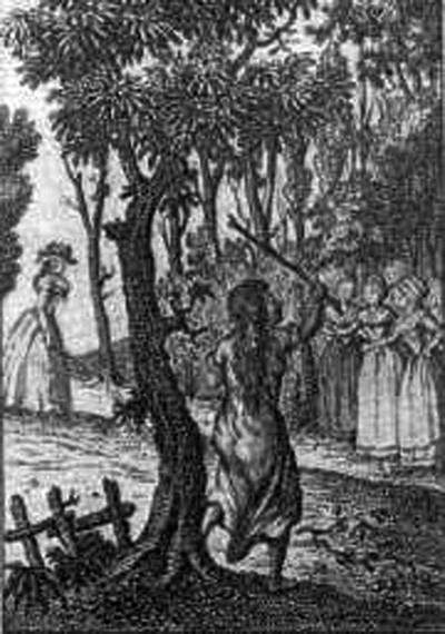 Bí ẩn về sự tồn tại của người rừng - ảnh 1