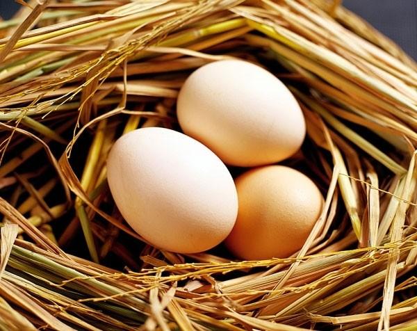 11 thực phẩm tuyệt đối KHÔNG kết hợp với trứng vì cực hại sức khoẻ - ảnh 1