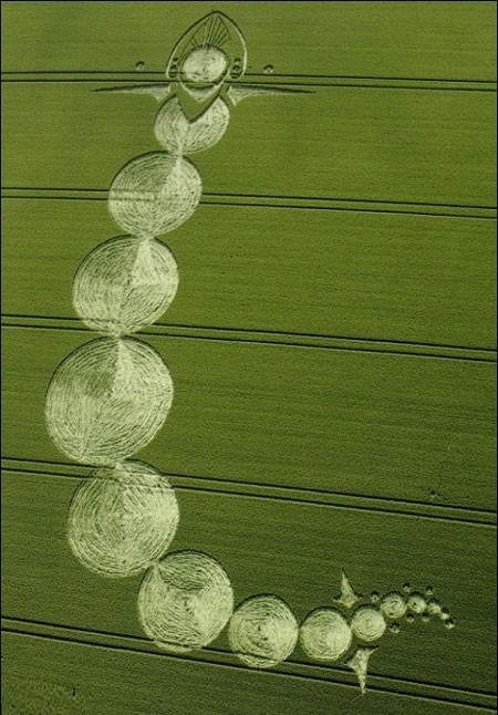 Lý giải những vòng tròn bí ẩn trên cánh đồng lúa mì ở Anh - ảnh 2