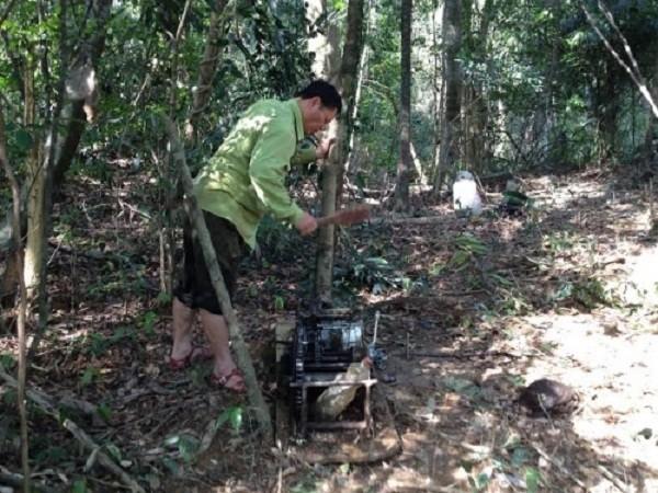 Nghệ An: 'Lâm tặc' tuyên bố dùng 'luật rừng' xử 2 lãnh đạo phòng hộ - ảnh 2