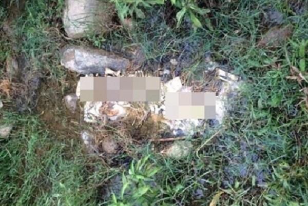 Phát hiện bộ xương người nằm lộ thiên gần bờ suối - ảnh 1