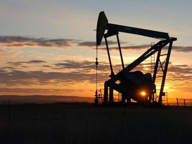 Giá dầu phá đáy đạt mức thấp nhất trong thập kỷ qua - ảnh 1