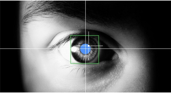 20 sự thật bạn chưa từng biết về đôi mắt - ảnh 5