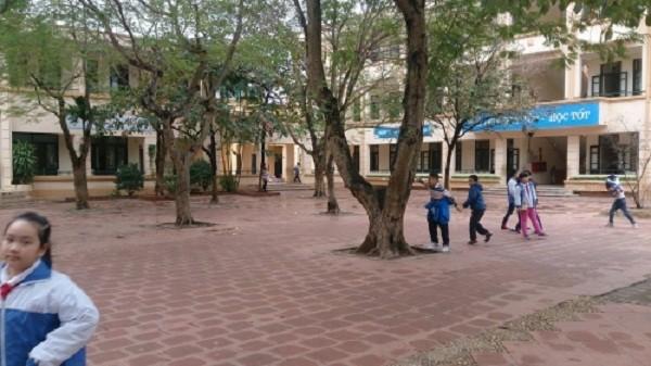 Vụ rau bẩn lên bàn ăn học sinh ở Hà Nội: 'Chúng cháu sợ lắm' - ảnh 2