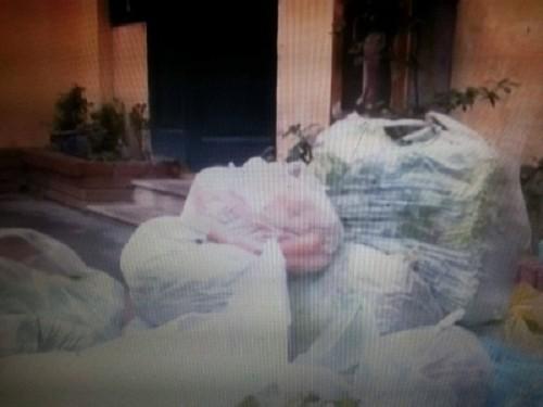 Sở GD-ĐT Hà Nội lên tiếng vụ tuồn rau bẩn vào trường học - ảnh 1