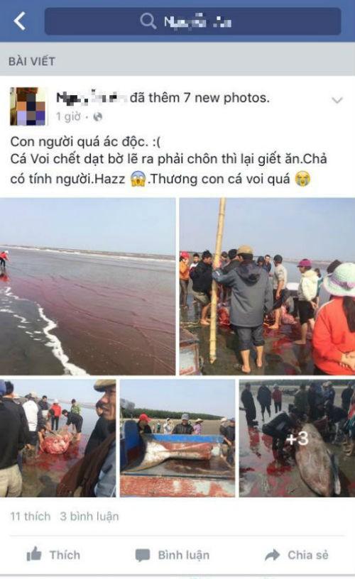 Sự thật vụ CÁ ÔNG bị người dân xẻ thịt khi dạt bờ ở Nam Định - ảnh 5