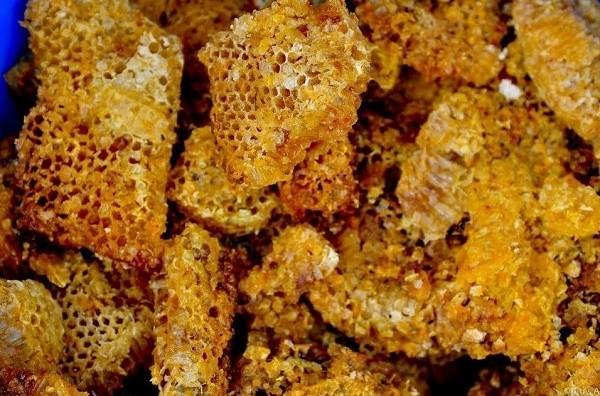 1 người chết, 13 người nhập viện sau khi ăn sáp ong rừng - ảnh 1