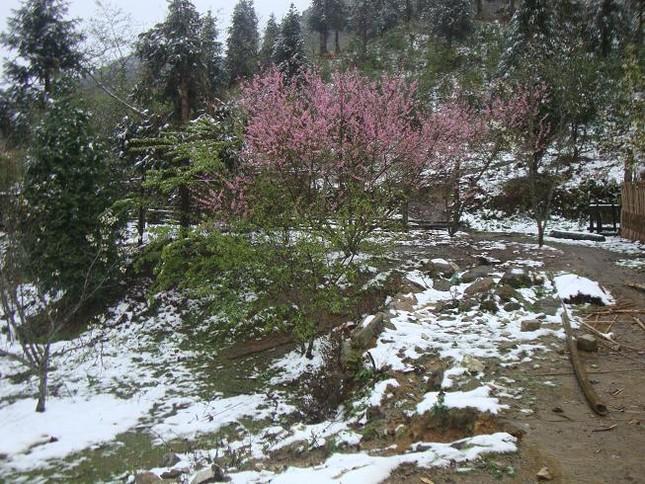 5 điểm có thể ngắm tuyết rơi đẹp như ở trời Tây tại Việt Nam - ảnh 6