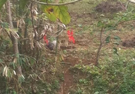 Cả làng kéo ra xem 'vật thể lạ' rơi ở Tuyên Quang - ảnh 4
