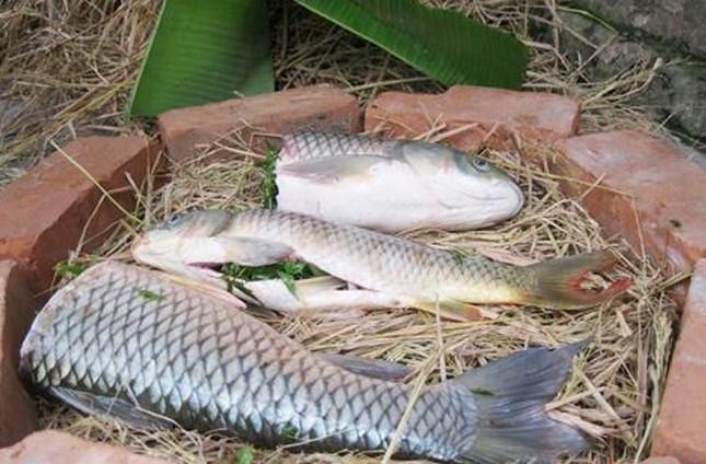 Cá nướng úp chậu, món nổi tiếng ngày tết chỉ có ở đất Thành Nam - ảnh 2