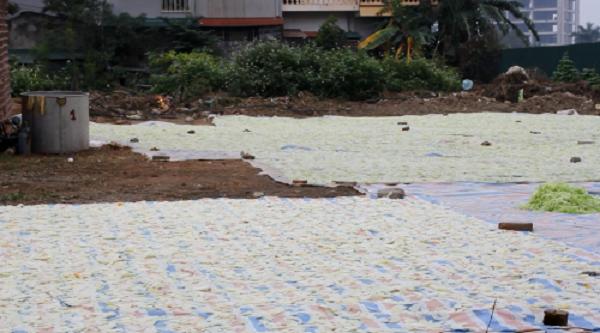 Kinh hoàng mứt tết phơi cạnh nhà vệ sinh ở làng nghề lớn nhất VN - ảnh 2