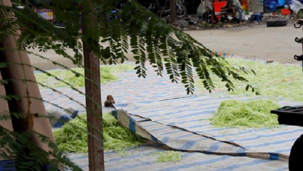 Kinh hoàng mứt tết phơi cạnh nhà vệ sinh ở làng nghề lớn nhất VN - ảnh 3