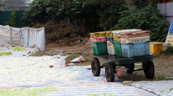 Kinh hoàng mứt tết phơi cạnh nhà vệ sinh ở làng nghề lớn nhất VN - ảnh 8
