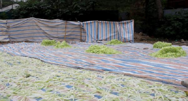 Kinh hoàng mứt tết phơi cạnh nhà vệ sinh ở làng nghề lớn nhất VN - ảnh 9