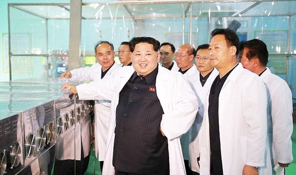 Triều Tiên tuyên bố sản xuất thành công rượu 'trường sinh bất tử' - ảnh 1
