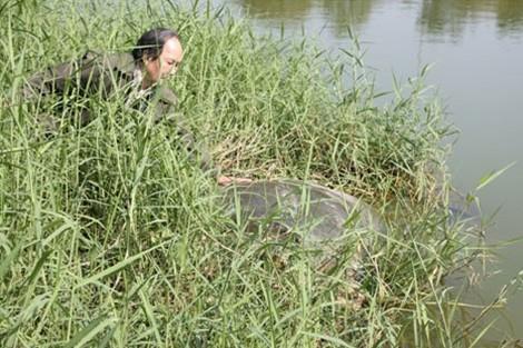 Một số hình ảnh đáng nhớ về cụ rùa của PGS Hà Đình Đức - ảnh 5