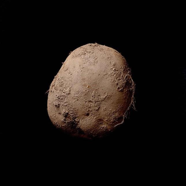 Bức ảnh chụp củ khoai tây được trả giá 1 triệu USD - ảnh 1