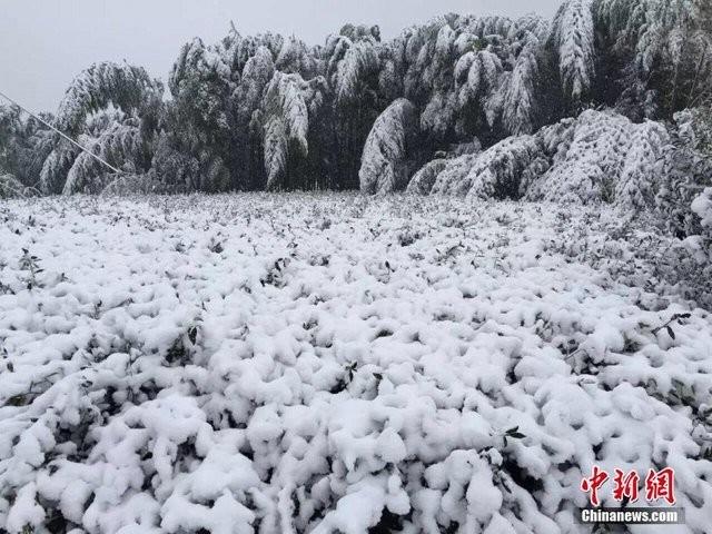 Trung Quốc lạnh đến nỗi hắt nước sôi cũng hóa băng - ảnh 6