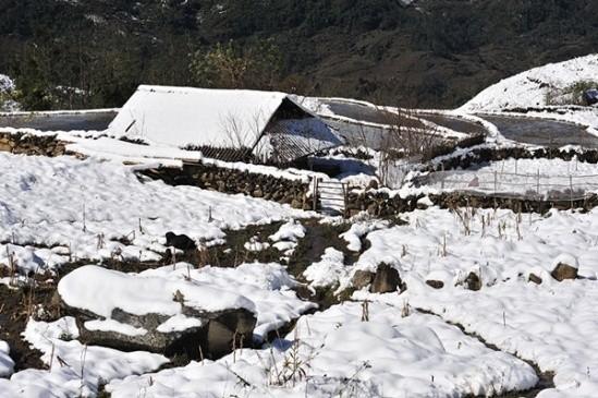 Tuyệt chiêu không thể bỏ qua khi du lịch Sapa ngày tuyết rơi - ảnh 4