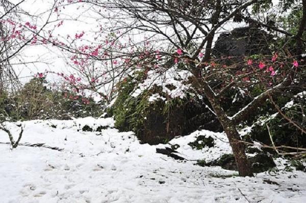Thời tiết ngày 23/1: Bắc Bộ rét đậm, rét hại, miền núi có tuyết - ảnh 1