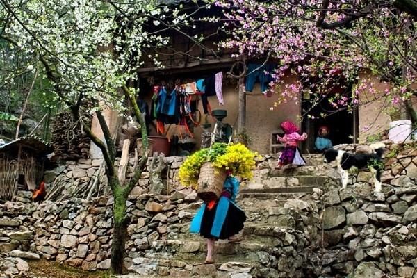 10 điểm hấp dẫn nhất Việt Nam để du lịch dịp Tết  - ảnh 1