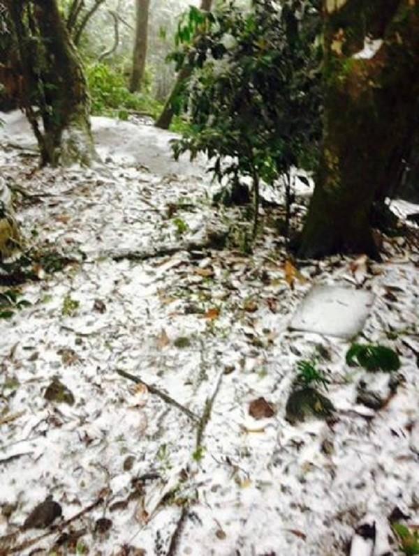 Sau Sa Pa, Mẫu Sơn, Hà Nội cũng có tuyết rơi ? - ảnh 5