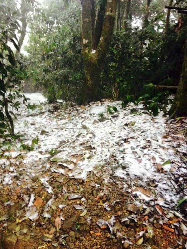 Chùm ảnh băng tuyết lần đầu tiên trong lịch sử ở Hà Nội - ảnh 4