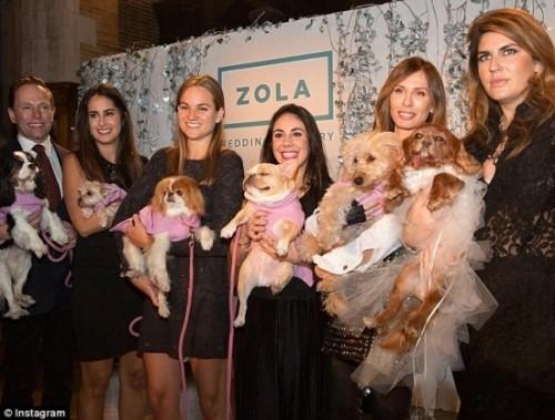 Váy cưới hơn 200 triệu, vòng cưới 2,9 tỷ của cặp chó nổi tiếng - ảnh 5