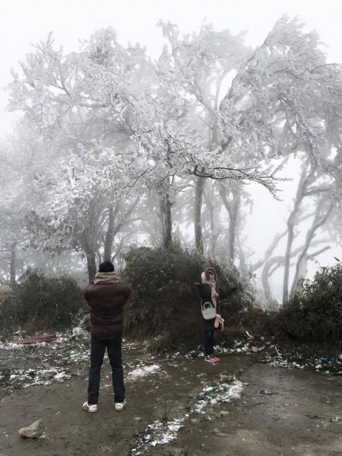 Chùm ảnh băng tuyết phủ trắng đỉnh Phja Oắc, Cao Bằng - ảnh 6