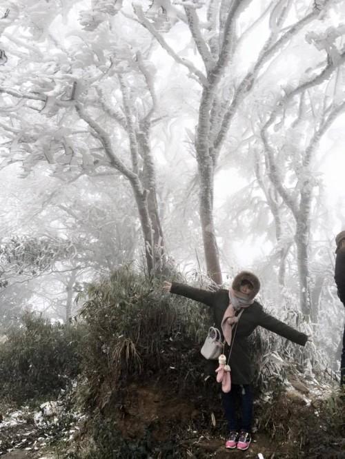 Chùm ảnh băng tuyết phủ trắng đỉnh Phja Oắc, Cao Bằng - ảnh 5