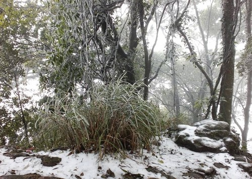 Trung tâm Hà Nội sẽ có tuyết rơi trong vài ngày tới? - ảnh 3