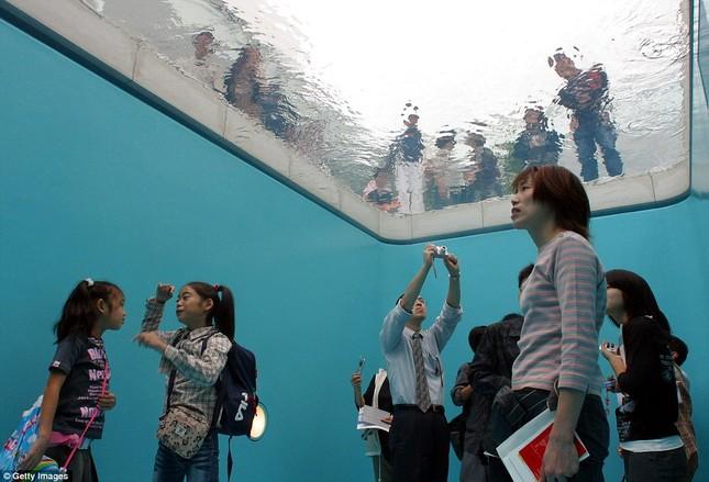 Có gì trong bể bơi ảo giác Nhật Bản và ngôi nhà kỳ quái ở Anh? - ảnh 4