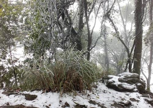 Hà Nội đã từng có tuyết rơi - ảnh 2