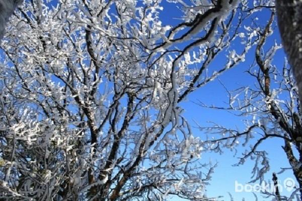 Thời tiết 27/1: Rét hại, băng tuyết ở miền Bắc chuẩn bị kết thúc - ảnh 1