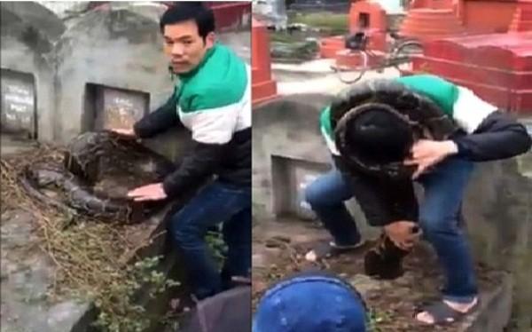 Xôn xao trăn khổng lồ chui vào mộ ở Hưng Yên - ảnh 1