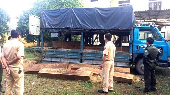 Đà Nẵng: Phát hiện kho gỗ hàng trăm m3 không rõ nguồn gốc - ảnh 1