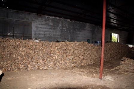 Đà Nẵng: Phát hiện kho gỗ hàng trăm m3 không rõ nguồn gốc - ảnh 2